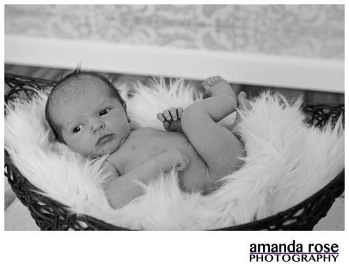 AmandaRosePhotography_Jameson_Newborn_0006